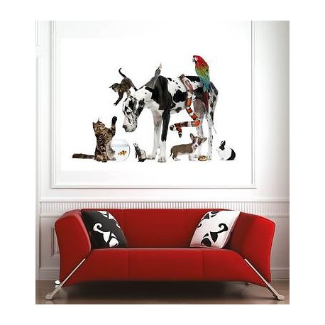 Affiche poster d coration murale animaux r f 57834802 6 for Decoration murale animaux