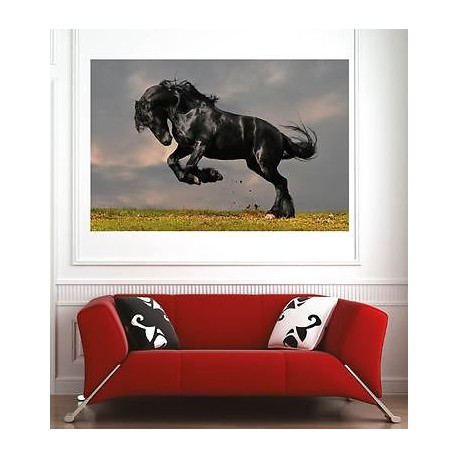 affiche poster d coration murale cheval r f 52661530 6 dimensions stickers muraux deco. Black Bedroom Furniture Sets. Home Design Ideas