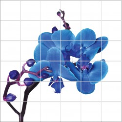 Stickers carrelage mural déco Orchidée bleue 1871