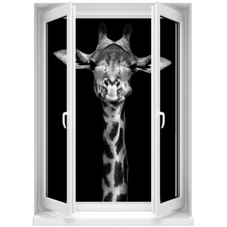 Sticker mural fen tre trompe l 39 oeil t te de girafe 5362 for Tete de fenetre decorative