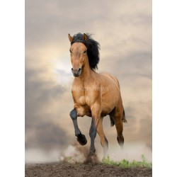 Stickers autocollant ou Affiche poster Cheval Marron au Galop AN_00097