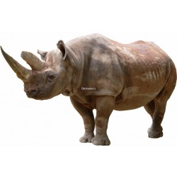 Sticker Rhinoceros