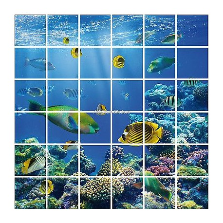 stickers carrelage mural faience d co cuisine ou salle de bain poissons r f 850 stickers. Black Bedroom Furniture Sets. Home Design Ideas